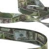dollar-6-2000px